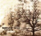 Duluth Trampled by Turtles Audio CD