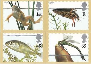 GB POSTCARDS PHQ CARDS MINT FULL SET 2001 POND LIFE PACK 233