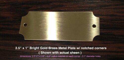 Personalized 2.5x1 Bright Gold Brass Plate w//notched ends for Trophy Taxidermy