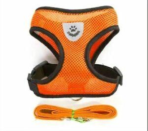 Marque Populaire (ch008) Cat Chaton Réglable Mesh Harness & Lead Set, Orange, Tailles Diverses-afficher Le Titre D'origine