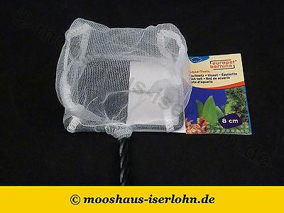 Fischfangnetz fein weiß 8 x 6cm Nano Aquarium Kescher Fangnetz Garnelenkescher