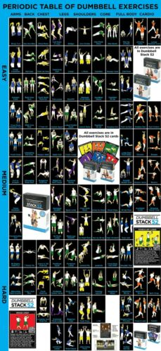 New Stack 52 Periodic Table for Dumbbell Exercise Poster