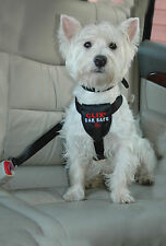Clix Car Safe Dog Harness S Provides Safety and Comfort For Dogs in The Car S