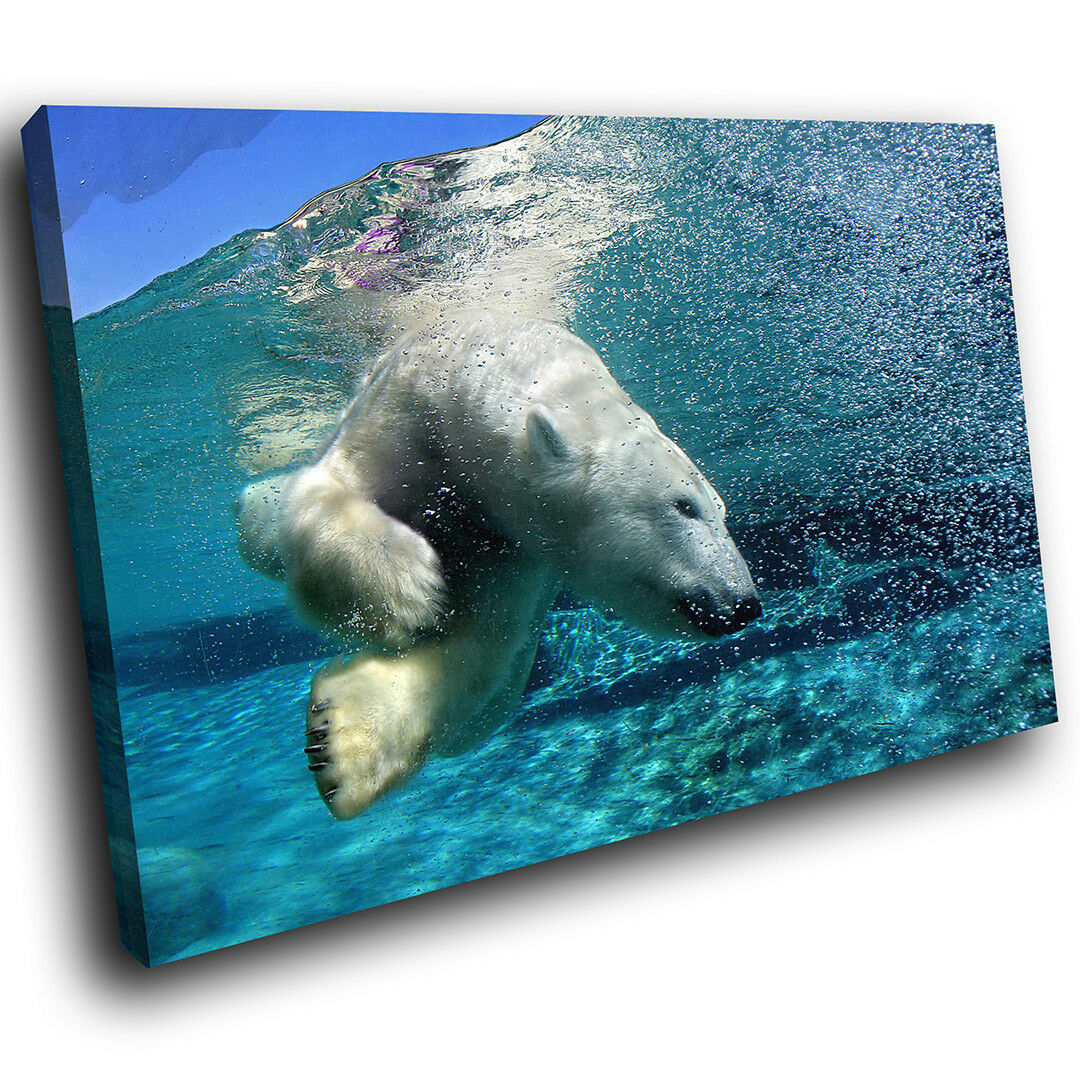 A123 Blau Weiß Polar Bear Swimming  Animal Canvas Wall Art Large Picture Prints
