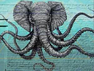Foto-Graffiti-Street-Pared-Elefante-Pulpo-hibrido-de-impresion-de-arte-poster-HP1846