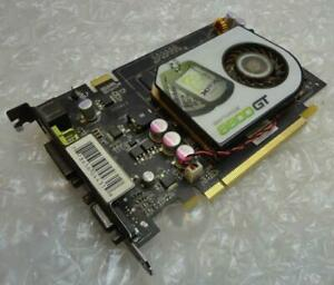 256 Mo XFX PV-T64J - YAJG GeForce 8600GT PCIE VGA DVI Carte graphique/gpu