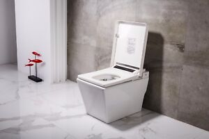 Dyconn faucet df 818za elongated tankless toilet with built in auto bidet seat 819788015430 ebay - Toilet with bidet built in ...