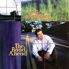 Road Ahead by Joe Sherbanee (CD, Oct-1998, Native Language Music)