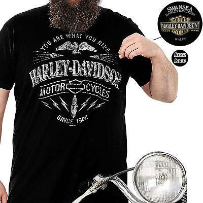 Harley Davidson Mens Ride Spark Black T-Shirt Swansea Limited Edition