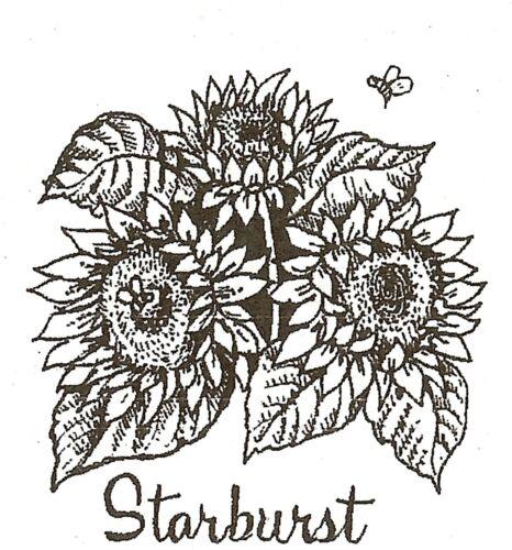 SUNFLOWER STARBURST Wood Mounted Rubber Stamp NORTHWOODS C10092 New
