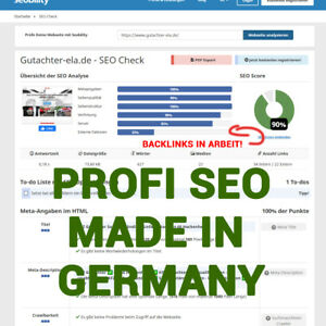 2-Monate-Google-Suchmaschinenoptimierung-Seo-Optimierung-Professionelle-Agentur
