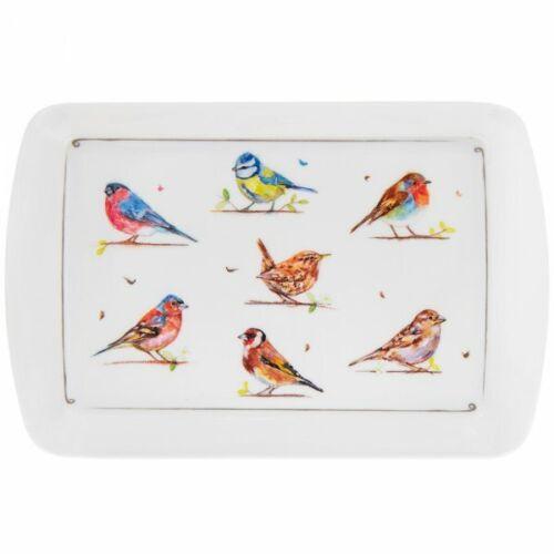 Garden Birds Design Melamine Tray Small Medium Large handles Robin Bluetit