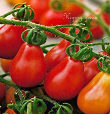 Tomate Pera-Rojo-Cherry Bell - 120 semillas