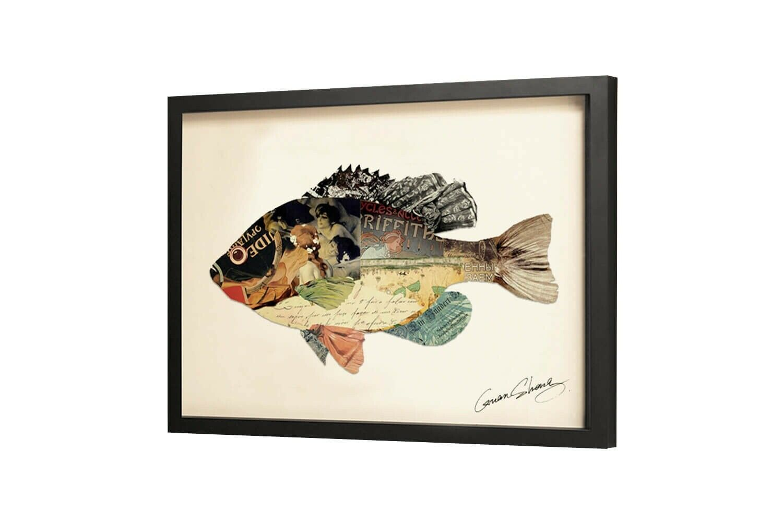 Frame Art 3D 'BUNT FISCH BILD'   HANDGEFERTIGT   Wandbild Kunst 61x46cm