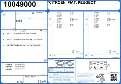 Full Engine Rebuild Conversion Gasket Set FIAT DUCATO 2.0 75 280 1981-
