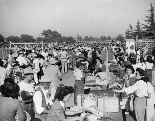 Internment Japanese Americans Relocation 1942 8x10 World War II WW2 Photo