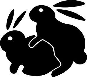 bunny no sex