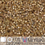 7g-Tube-of-MIYUKI-DELICA-11-0-Japanese-Glass-Cylinder-Seed-Beads-Part-2 miniature 39
