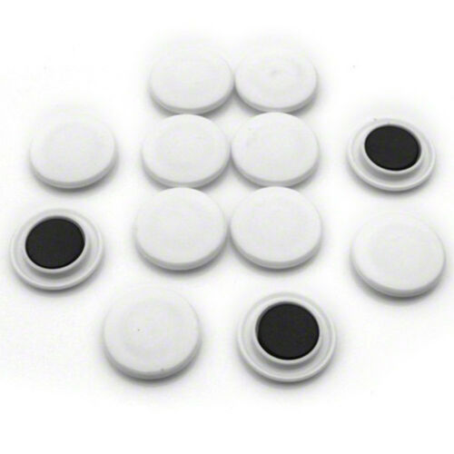 Large White Notice Board//Planning Magnets 40mm dia x 8mm high 10 packs of 12