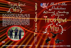 Daniel-Sterling-039-s-Vol-4-Kicks-Gone-Wild-Xtreme-Combos-Instructional-DVD