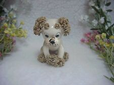Spaghetti Poodle~Vintage Puppy Dog With Fly Or Bee On His Nose~Big Eyes
