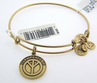 Alex And Ani Turn Peace Up Charm Bangle With Gold Finish 58