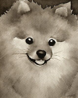 Pomeranian Art Print Sepia Watercolor Painting by Artist DJR