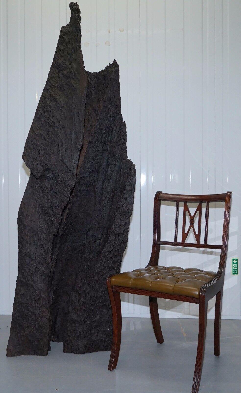 SPLENDIDA GRANDE DERIVA naturali LEGNO ARTE scultura pezzo splendido bella patina