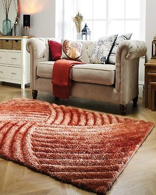 Small Large Terracotta Burnt Orange Thick Soft Carved Pile 3d Verge Furrow Rug Ebay