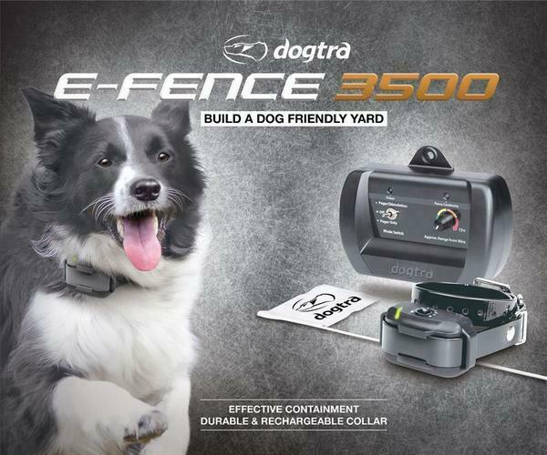 Dogtra E Fence 3500 Rechargeable In Ground Dog Containment System 500 ft.
