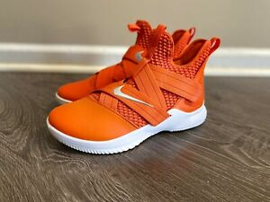 Nike Lebron Soldier XII TB Basketball