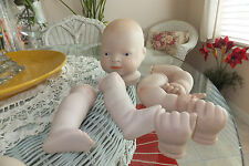 Doll Parts Porcelain Bisque Baby complete Head legs hands + extra arms no wig