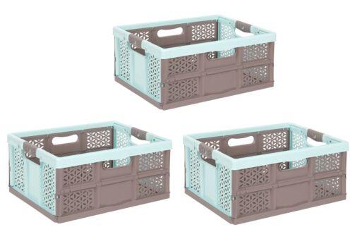 braun 32 L Faltbox Transportkiste 3 x Profi Klappbox mit softgriffen aquamarin
