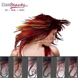 Plume-Veritable-Extension-Cheveux-6-Qualite-De-Salon-Grizzly-20cm-33cm-Long