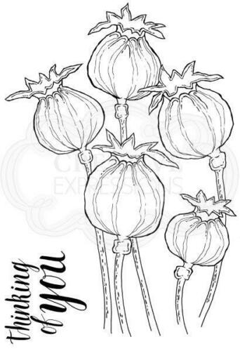 Woodware Clear Magic stamp set Poppy Heads JGS658
