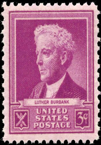 MAGNET US Postage Stamp PHOTO MAGNET Luther Burbank 1940 issue 3c