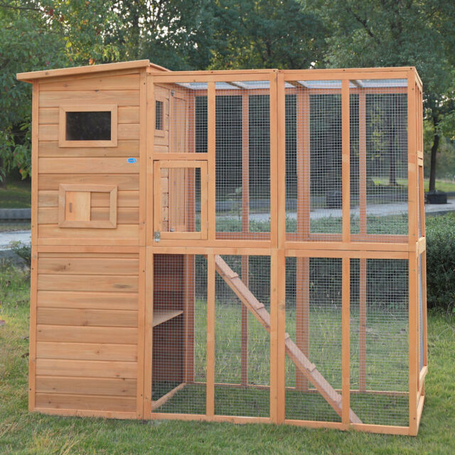 Outdoor Cat Pet House Run Enclosure Wooden Fun Small