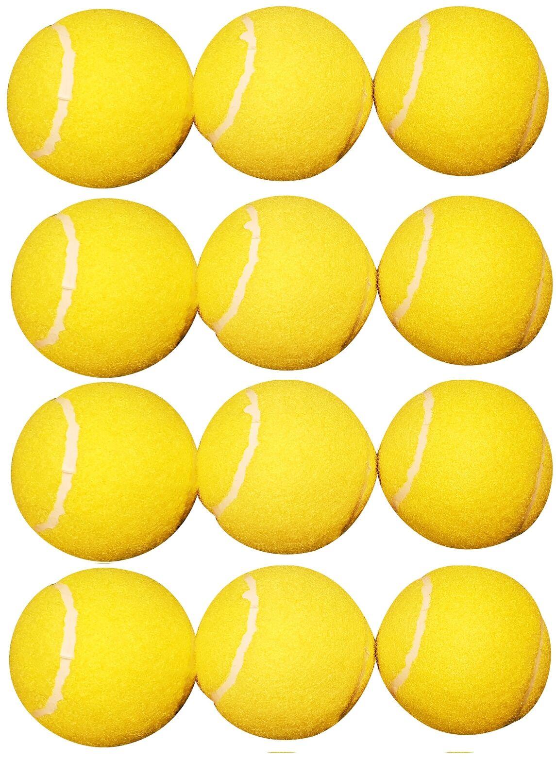 Charlsten Tennis Balls 12 Piece in Set
