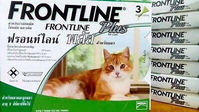 Front+line+  for Cats and Kitten, 6 doses