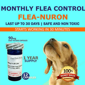 1-Year-Supply-MONTHLY-Flea-Control-for-DOGS-11-20-Lbs-90-Mg-PB-12-Capsules