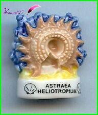 """Feve Les coquillages Shell Edition Atlas """" Le Astraea Heliotropium """" #C54"""