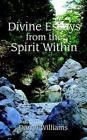 Divine Essays From The Spirit Within 9780759601314 by Darryl Williams Paperback