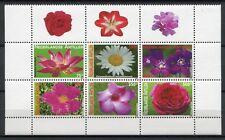 Niederländische Antillen 2009 Blumen Flowers Blüten Blossoms Plant 1719-1724 MNH