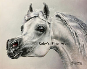 034-Arabian-034-Horse-Art-Giclee-Print-8-034-x-10-034-Equine-Image-By-Roby-Baer-PSA