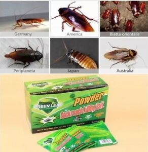 USA-Seller-Green-Leaf-Cockroach-killing-bait-powder-10-Pieces
