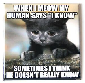 Cat Meme #21 FRIDGE MAGNET humor funny