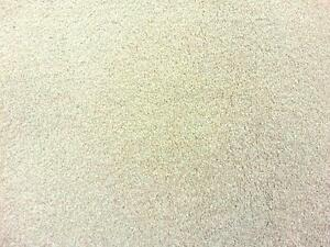 cream carpet texture. Image Is Loading Carpet-Cream-Saxony-Super-Deep-Pile-Stain-Free- Cream Carpet Texture