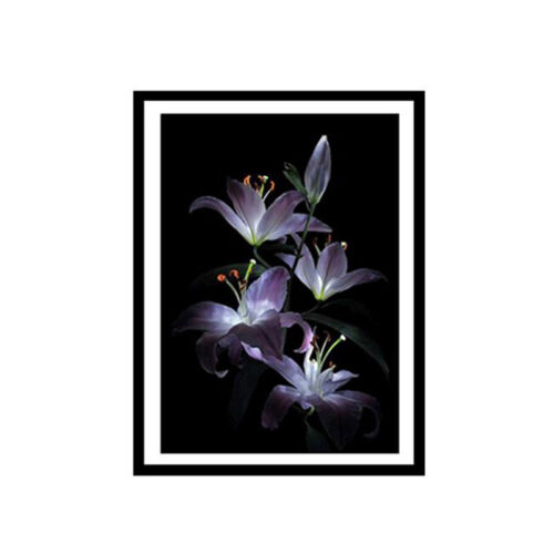 Ready Stock Plant Wall Art Home Decor Flower Cross Stitch Diamond Painting FM