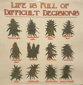 22b3434c1ecf LIFE IS FULL OF DECISIONS POT WEED MARIJUANA LEAF MARY JANE SHIRT ...