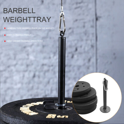 Weight Plate Home Gym Loading Pin With Carabiner Steel Exercises Bodybuilding